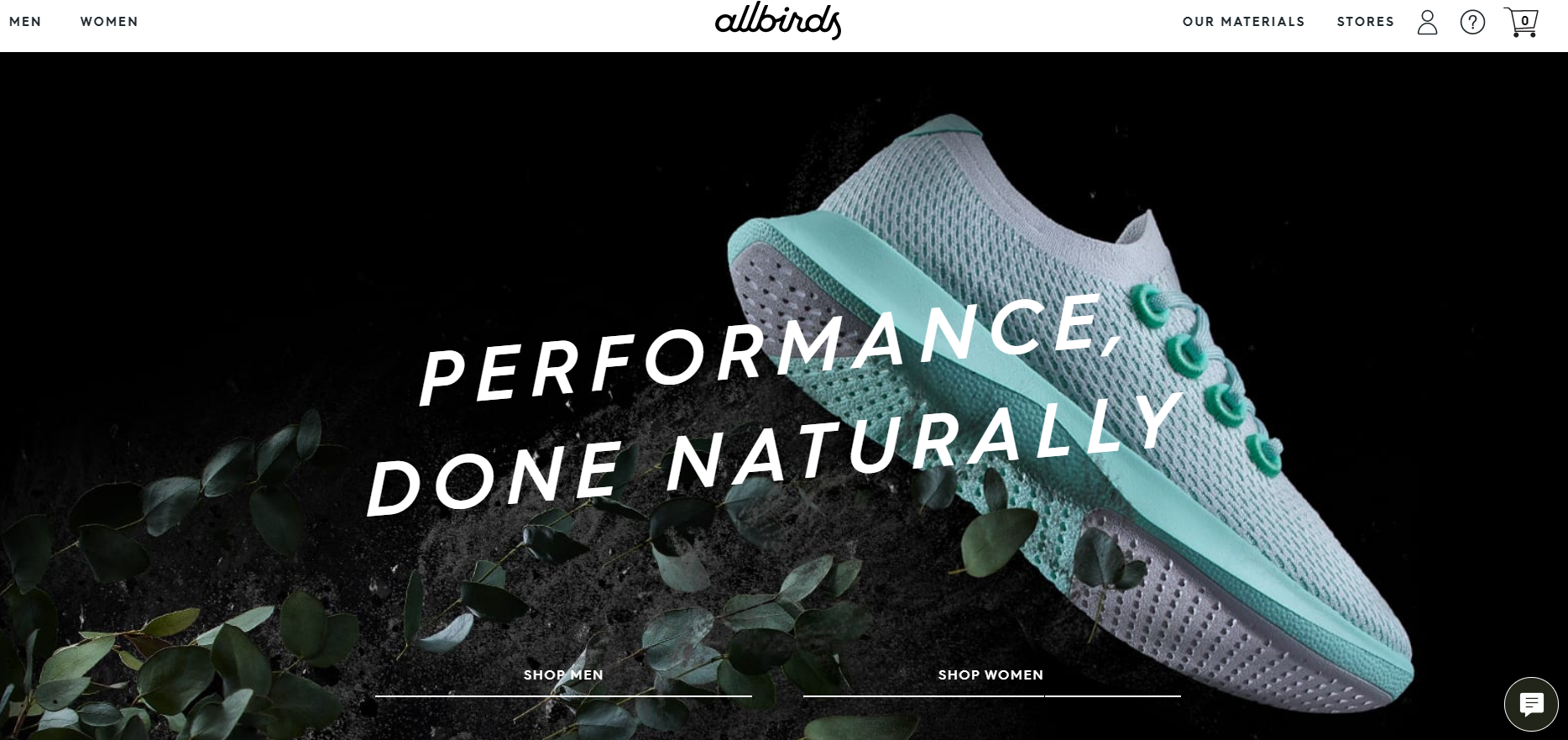top shopify store example by Allbirds